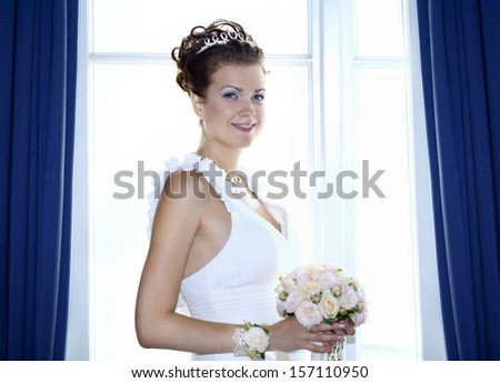 Beautiful brunette bride wearing wedding dress - stock photo