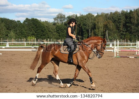 Beautiful brunette woman riding (trotting) chestnut horse in summer - stock photo
