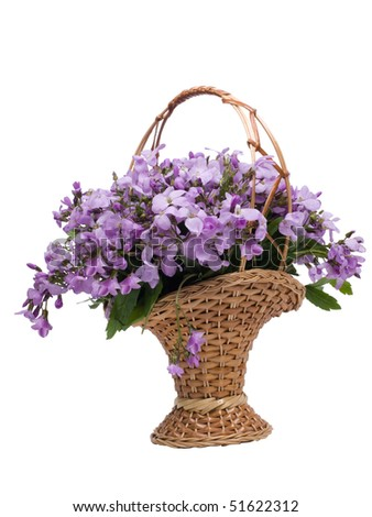 Beautiful bunch of flowers in basket on white background