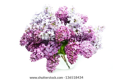 Beautiful Bunch of Lilac in the Vase - stock photo