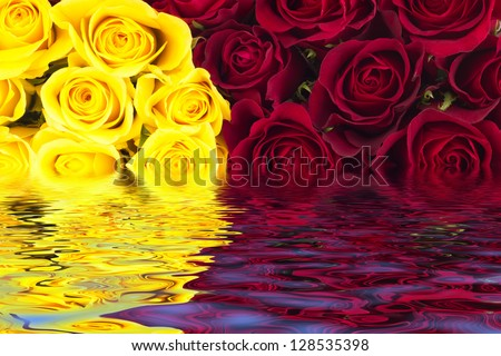 Beautiful bunch of roses - stock photo
