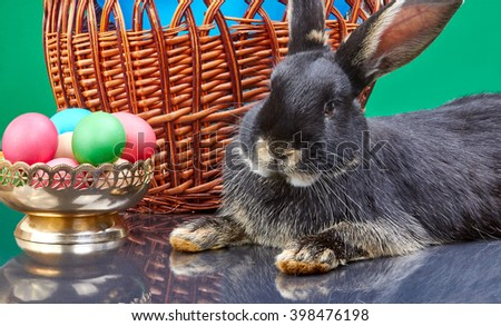 Beautiful bunny near a basket with a balloon and a vase with Easter eggs - stock photo