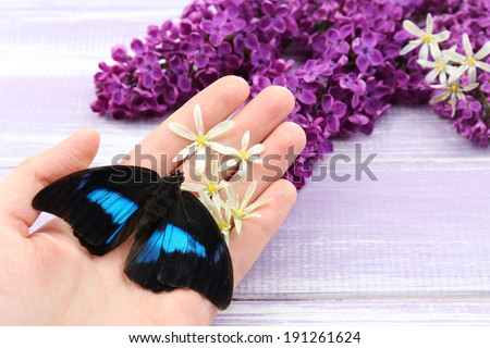 Beautiful butterfly sitting on hand and lilac flowers, on wooden background