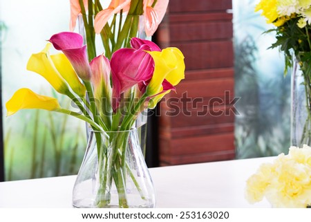 Beautiful calla lily flower in jar for decoration
