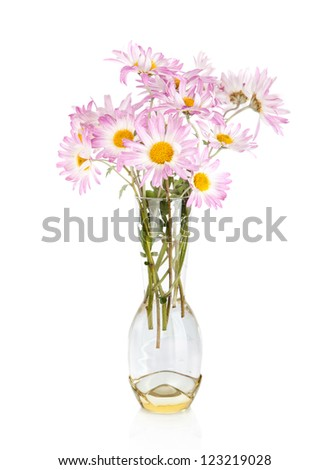 Beautiful camomile flowers in vase  isolated on white - stock photo
