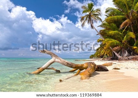 Beautiful caribbean beach on Saona island. Dominican Republic - stock photo