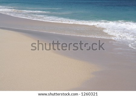 Beautiful caribbean beach with white sand