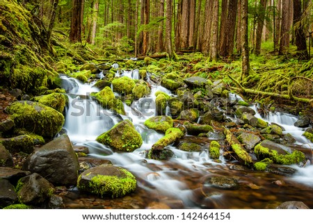 Beautiful cascade waterfall in Olympic national park, WA, US - stock photo