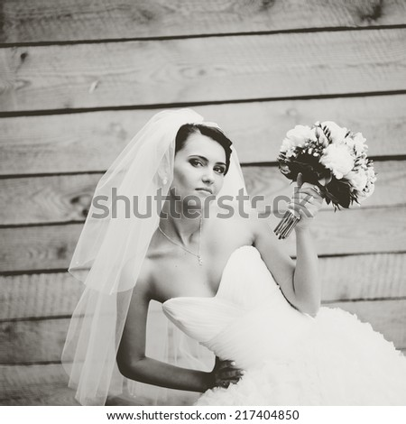 Beautiful caucasian brunette bride on wooden background.  - stock photo