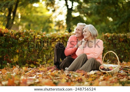 Beautiful caucasian elderly couple in the park in autumn - stock photo