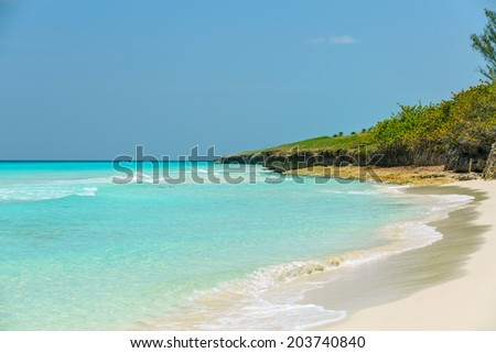 beautiful charming wide open  view  of natural tropical background on warm bright sunny day - stock photo