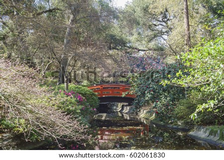 beautiful cherry blossom at japanese garden of descanso garden los angeles california