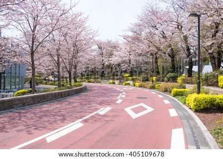 Beautiful Cherry blossom blooming along the street in Tokyo Midtown during spring - stock photo