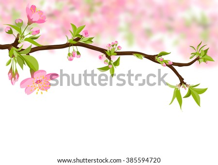 Beautiful Cherry Blossom Branch - Sakura Flower Beauty. Floral Pink Colored Springtime Illustration - Japanese Traditional Eve - Background Decoration - Greeting Card Decor Template.