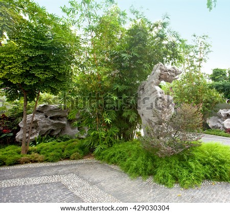 Beautiful Chinese style garden with mature green bamboo - stock photo