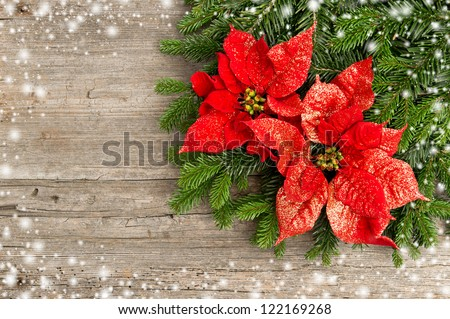 beautiful christmas tree branch with red poinsettia flower on wooden background - stock photo