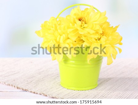 Beautiful chrysanthemum flowers in bucket on table on light background