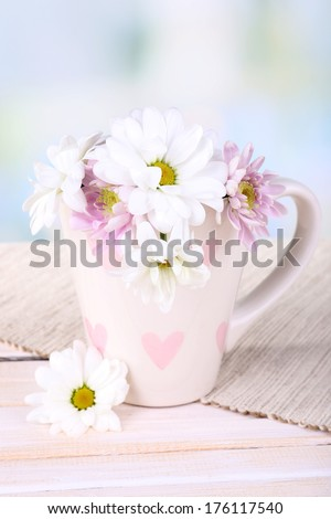 Beautiful chrysanthemum flowers in cup on table on light background - stock photo