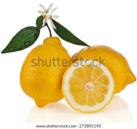 Beautiful citrus lemon with slice close up isolated on white background - stock photo