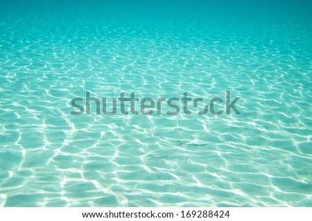 Beautiful clear underwater surface. - stock photo