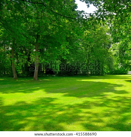 Beautiful clearing in summer park - stock photo