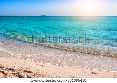 Beautiful coast on the island in the Red Sea. Summer landscape - stock photo
