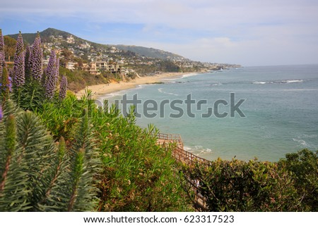 Beautiful coastline view of Laguna Beach, California, USA