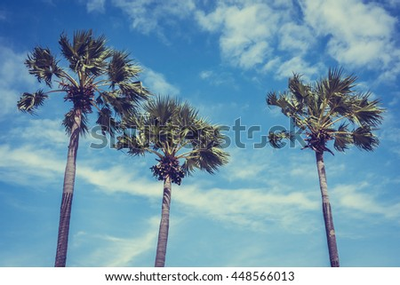Beautiful coconut palm tree on blue sky background - Vintage Filter