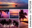 Beautiful collage of tropical sunset images, beach, palm trees at twilight - stock photo