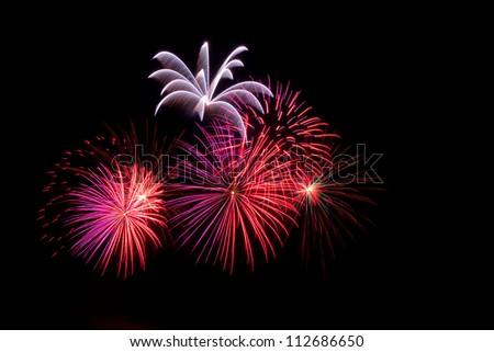 Beautiful colored  firework - stock photo