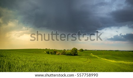 beautiful, colorful clouds over a field of wheat
