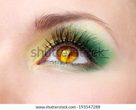 Beautiful colorful eye close up - stock photo