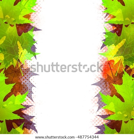 Beautiful colorful maple autumn leaves on white background.