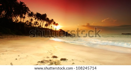 Beautiful colorful sunset over sea and boulders seen under the palms on Sri Lanka. Panorama - stock photo