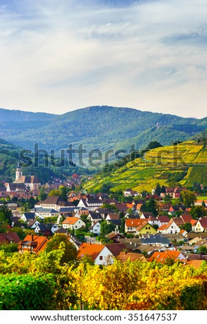 Beautiful colorful vineyards in Alsace hills, autumn