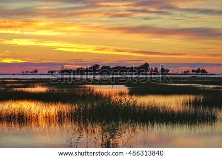 Beautiful Wetlands Sunset Stock Photo 486309631 - Shutterstock