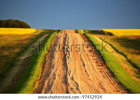 Beautiful colors along a Saskatchewan country road - stock photo