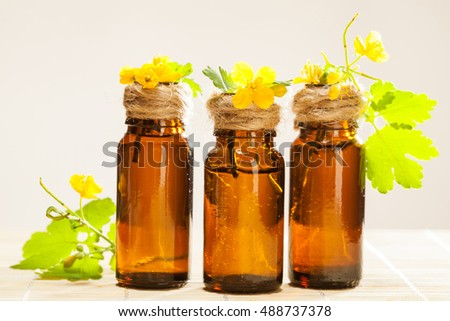 Beautiful composition of bottles with greater celandine oil and fresh celandine plant on bamboo background