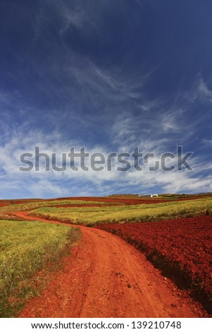 beautiful country on red dirt - stock photo