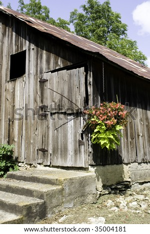 Beautiful country shot of a flower pot next to an old rickety door to a barn.