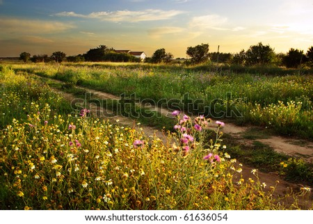 Beautiful countryside landscape with an old house ant sunset - stock photo