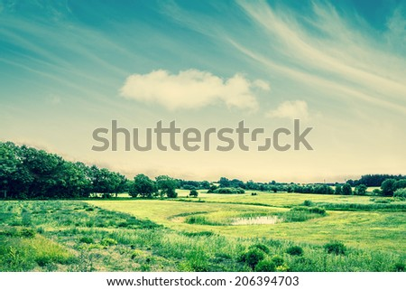 Beautiful countryside landscape with green fields