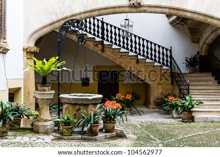 Beautiful court with flowers and old fashion well