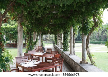 Beautiful cozy outdoor cafes and vineyards. summer