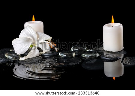 beautiful cryogenic spa concept of delicate white hibiscus, zen stones with drops, ice and candles on ripple water