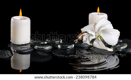 beautiful cryogenic spa concept of delicate white hibiscus, zen stones with drops, ice and candles on ripple water - stock photo