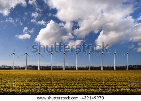 Beautiful daffodils bulb farm with a wind turbines electricity generator for a sustainable world - stock photo