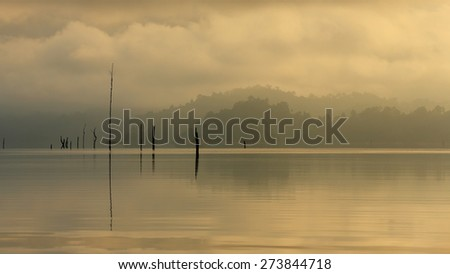 Beautiful dead trees and the mist in the lake at morning light of Khao Sok, the South of Thaialand - stock photo
