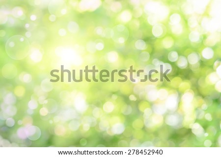 Beautiful defocused highlights in foliage create a bright bokeh composition, ideal as a nature background - stock photo