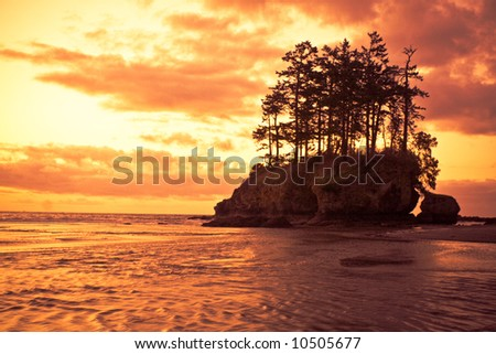 Beautiful dramatic sunset with trees and sea stacks along the Pacific coast - stock photo